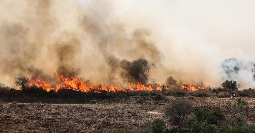 """Para el jefe de Parques hay una mano política atrás del """"anfiteatro de fuego y humo"""" en Rosario"""