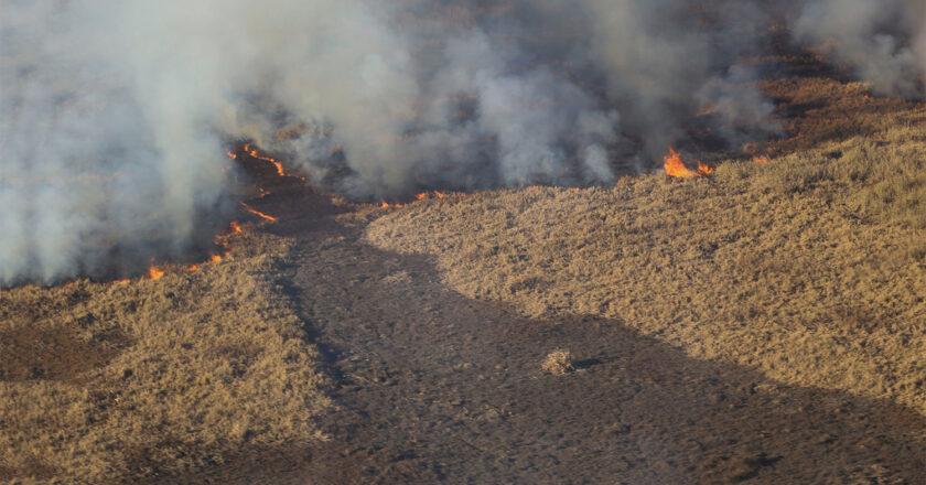 Avanza el proyecto que prohíbe construir en islas quemadas por al menos 30 años